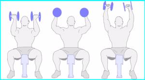 画像引用元:http://www.muscle-training.net/img/arnold_presspe_2.jpg