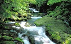 まとめ 川 風景フリー