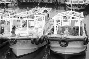 小型船舶2 フリー素材